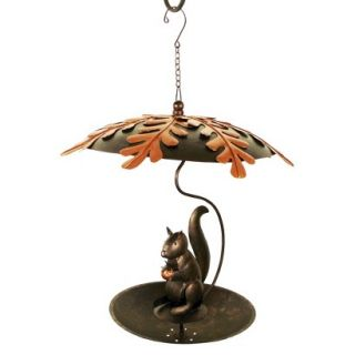 Hungry Squirrel Bird Feeder