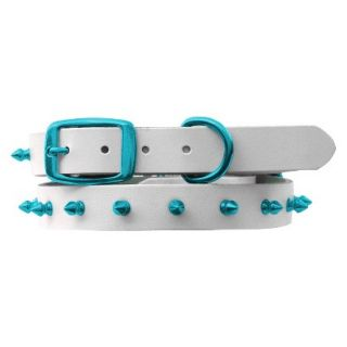 Platinum Pets White Genuine Leather Dog Collar with Spikes   Teal (17 20)