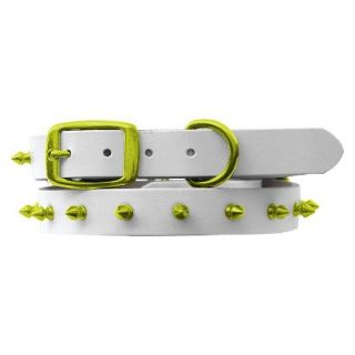 Platinum Pets White Genuine Leather Dog Collar with Spikes   Corona Lime (17