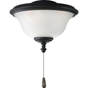 Progress Lighting Ashmore Collection Forged Black 2 light Ceiling Fan Light DISCONTINUED P2636 80