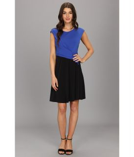 Kenneth Cole New York Kasia Dress Womens Dress (Blue)