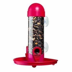 Garden Song 1 lb. Wildbird Window Bird Feeder 462 6