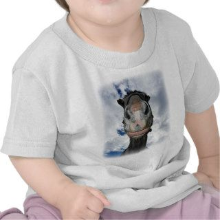 Horse Nose Knows Funny Smiling Horse Tee Shirts