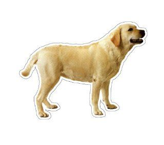 LABRADOR RETRIEVER   Dog Decal   sticker yellow lab car