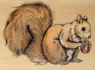 Squirrel Rubber Stamp Wood Mounted By Rubber Stampede A844D