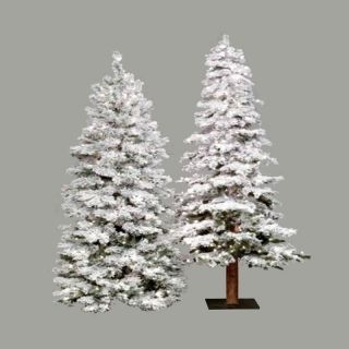 Pre lit Clear Light 4 ft. Flocked Spruce Alpine Tree   Christmas Trees
