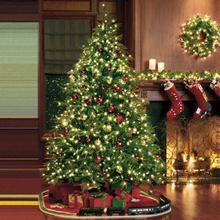 Pre Lit Frasier Grande Hinged Tree with Color Changing Technology   Christmas Trees