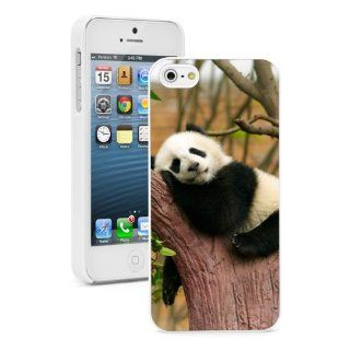 Apple iPhone 5 5S White 5W842 Hard Back Case Cover Color Sleeping Baby Panda in Tree Cell Phones & Accessories