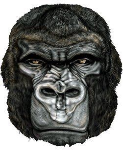 "2"" Helmet Hardhat Printed gorilla head color airbrushed decal sticker for any smooth surface such as windows bumpers laptops or any smooth surface."
