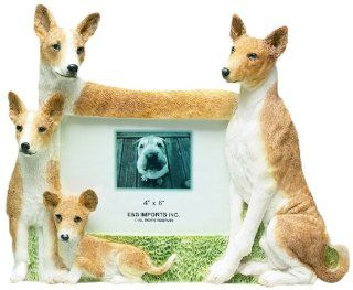 E&S Pets 35257 136 Large Dog Frames  Pet Memorial Products