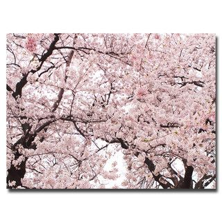 Ariane Moshayedi 'Cherry Blossom Bonanza' Canvas Art Trademark Fine Art Canvas