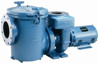 Pentair CCSPHN3 145MS2 Wind Start Pool and Spa Pump, 20 HP, 230/460 Volt  Swimming Pool Water Pumps  Patio, Lawn & Garden