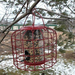 SQUIRREL RESISTANT BIRD FEEDER   MADE OF IRON WITH PLASTIC FOOD CHAMBER  Wild Bird Feeders  Patio, Lawn & Garden