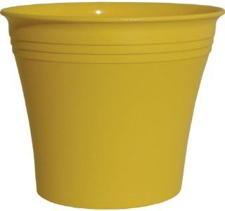 Rush Creek Designs PIM20210083212 3.3 Inch Yellow Aspen Injection Molded Planter  Patio, Lawn & Garden