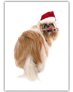 Shih Tzu Dog Christmas Greeting Cards 10 Pack Holiday  Pet Care Products