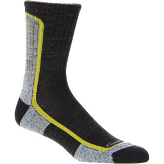 Darn Tough Merino Wool Micro Crew Light Hiker Sock   Men's