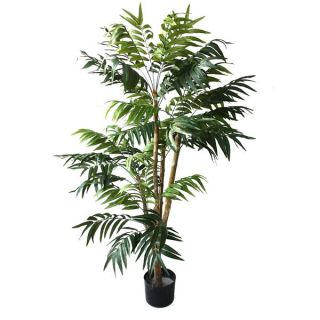 Romano 5 foot Indoor/ Outdoor Tropical Palm Tree   16023230